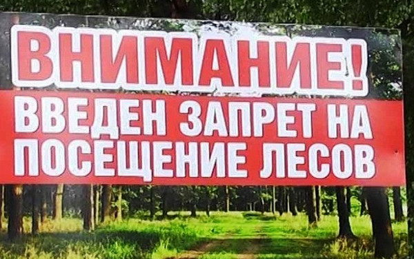 27.07.2020 В Жлобинском районе введен запрет на посещение лесов